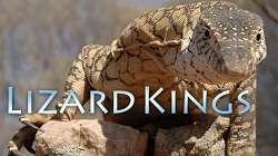 Vua Thằn Lằn